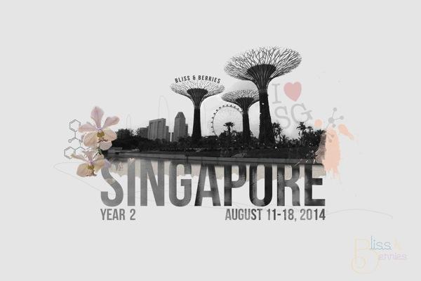 Singapore BnB 2